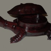 tortue-feng-shui2